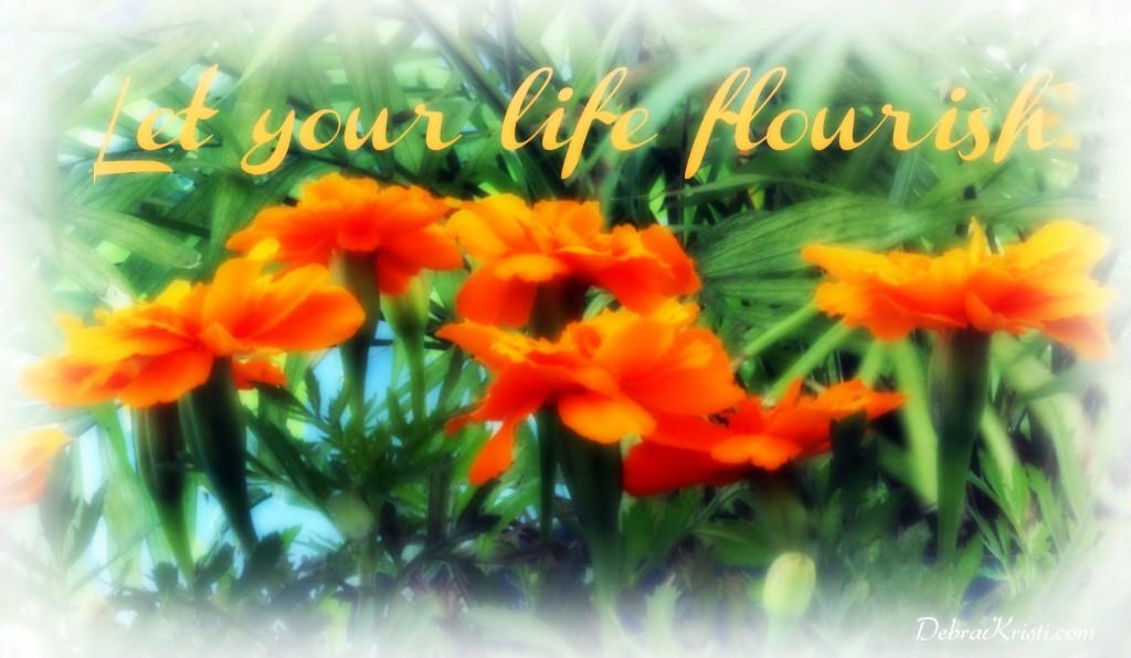 life flourish