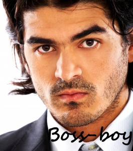 Boss-boy in Mystic's character file by Debra Kristi, author