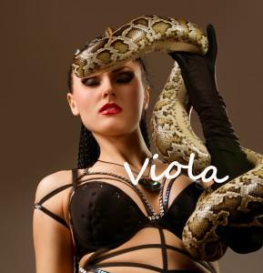Viola in Mystic's character file by Debra Kristi, author